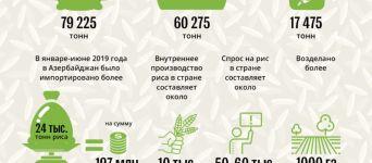 Азербайджан производит риса меньше, чем потребляет